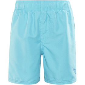 "Nike Swim Big Swoosh Logo Bathing Trunk Children 4"" blue"